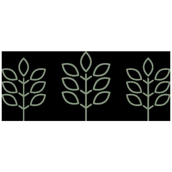the-grove-icon